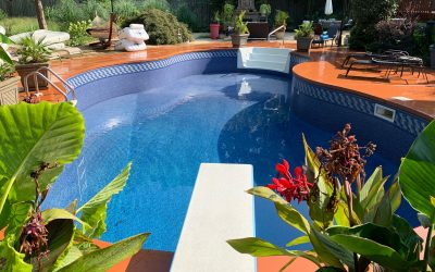 Beautiful Swimming Pool Frames with Tropical Plants